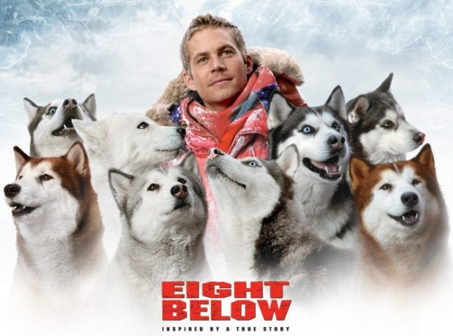 film eight below