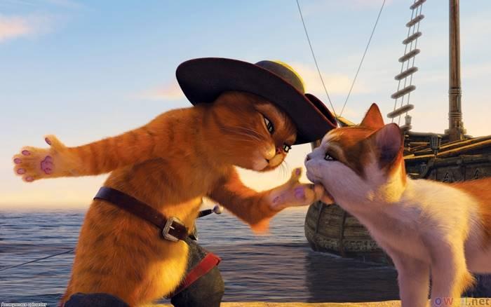 3-Film-Tentang-Kucing-Yang-Menarik-Untuk-Ditonton-3